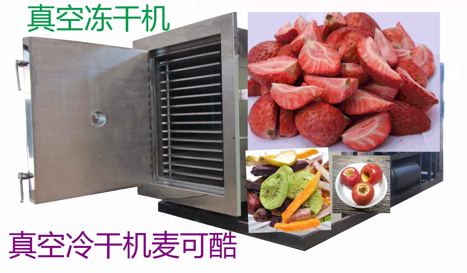 冷冻干燥机002